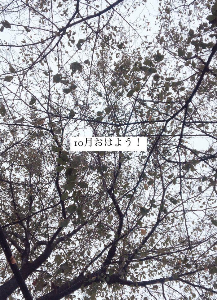 E037DFC0-F846-4DF1-BE74-A4708337454D.jpg